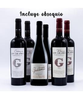 Pack 6 Vinos Premium